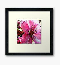 FloralFantasia 30 Framed Print