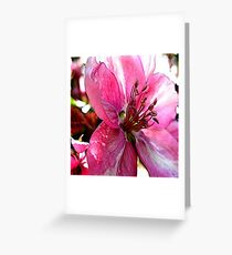 FloralFantasia 30 Greeting Card