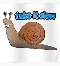 Take it Slow Snail Poster