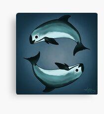 """Spiraling"" vaquita porpoise by artist Amber Marine (Copyright 2015) ~ vaquita art, critically endangered species  Canvas Print"