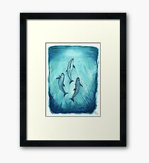 """""""Song of the Vaquita"""" (Porpoise, Critically Endangered Species) watercolor art by Amber Marine, © 2015   Framed Print"""