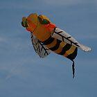 Bee Kite @ Bondi Beach, Australia 2010 by muz2142