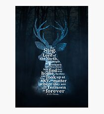 Throne of Glass - The Stag, the Lord of the North Photographic Print