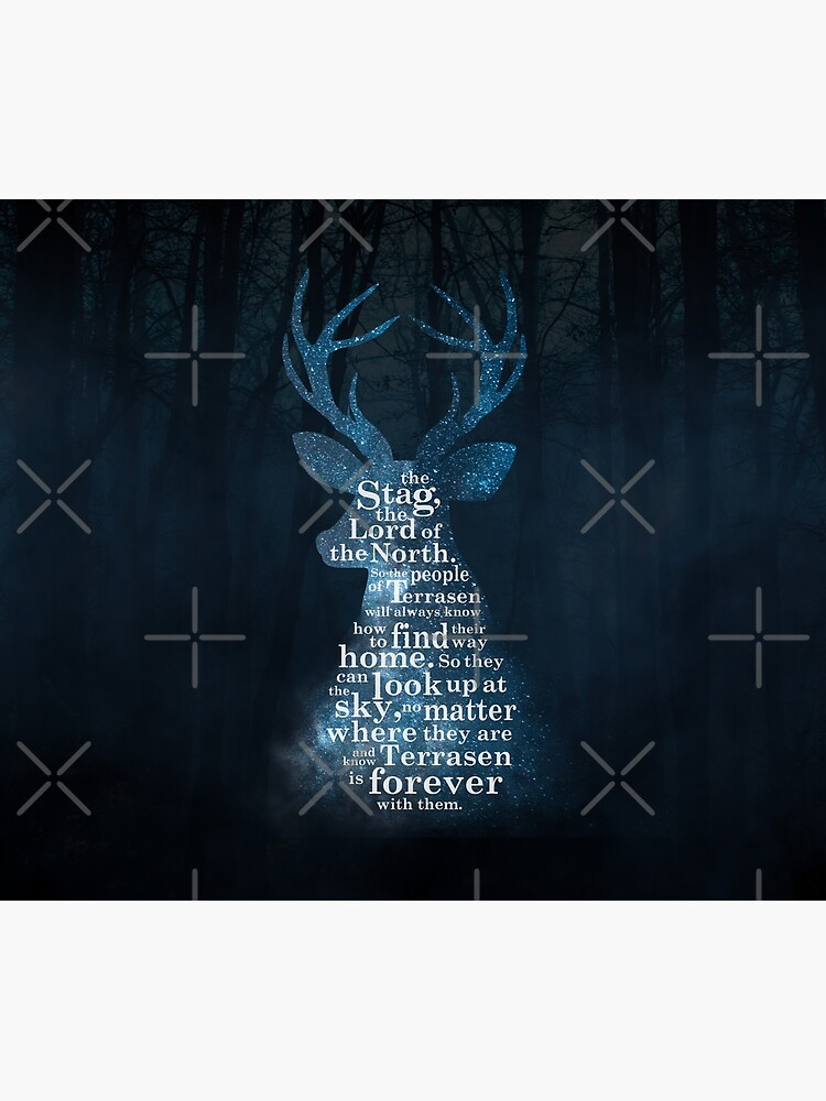 Throne of Glass - The Stag, the Lord of the North by yairalynn