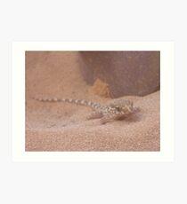 Sand Gecko Art Print