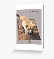 Dexter Greeting Card