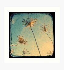 Reach for the Sky - Through The Viewfinder (TTV) Art Print
