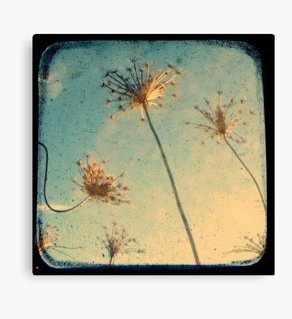 Reach for the Sky - Through The Viewfinder (TTV) Canvas Print