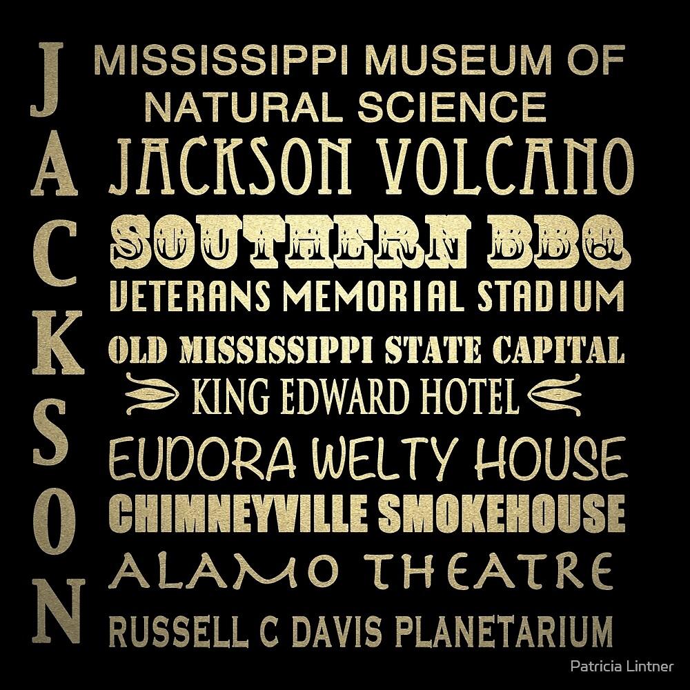 Jackson Mississippi Famous Landmarks by Patricia Lintner