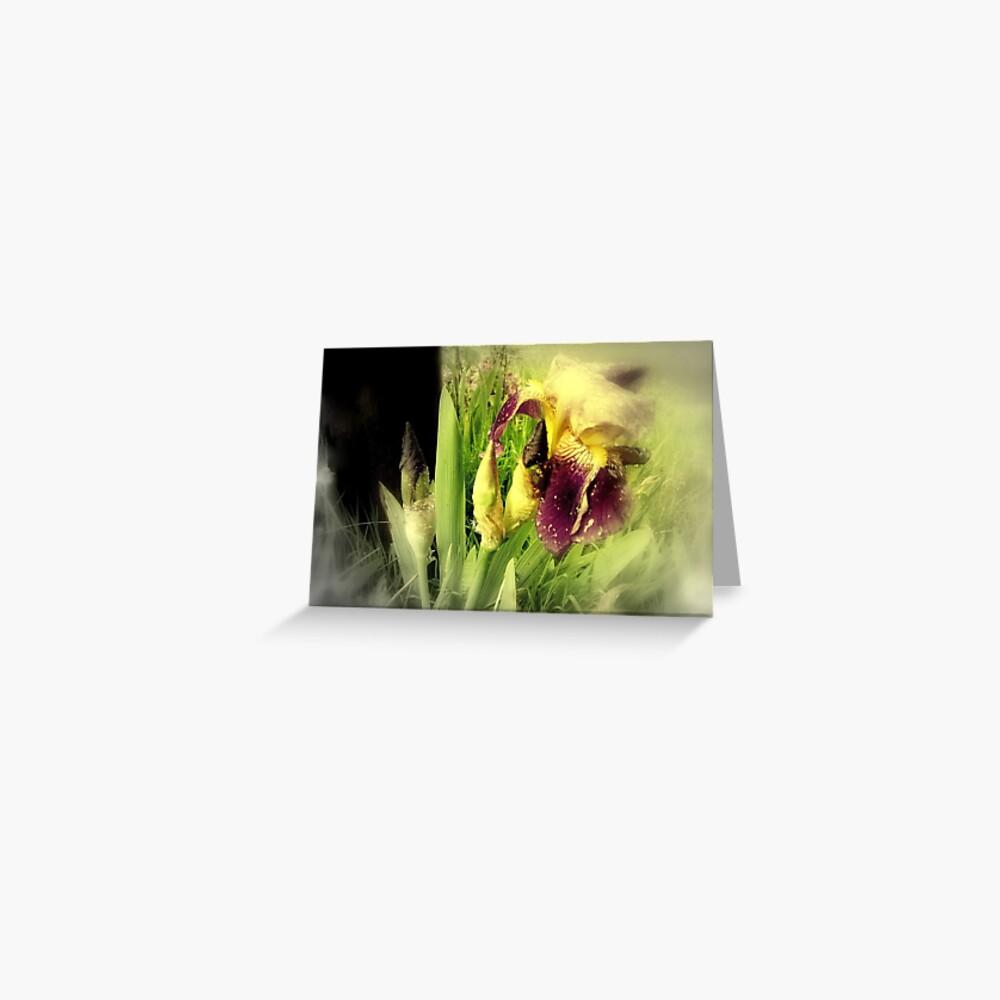 Raindrops on Purple Irises #5 Greeting Card