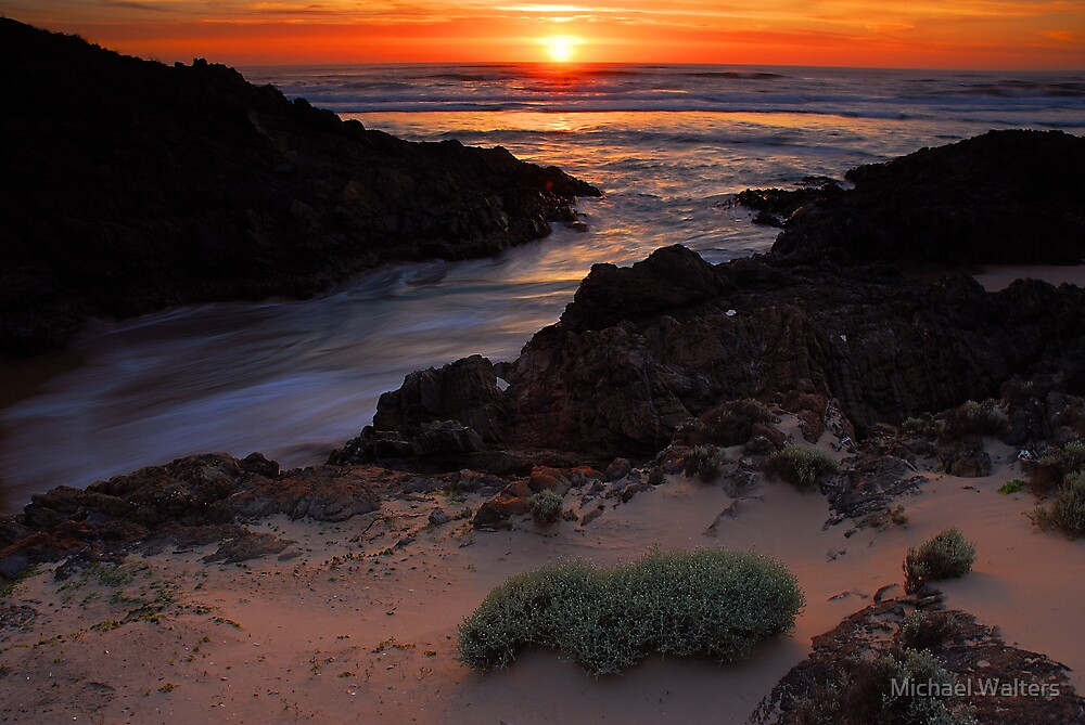 Sunset on the Tarkine by Michael Walters
