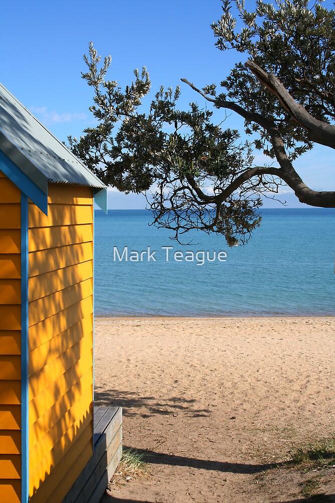Beach Hut at Dromana Beach by Mark Teague