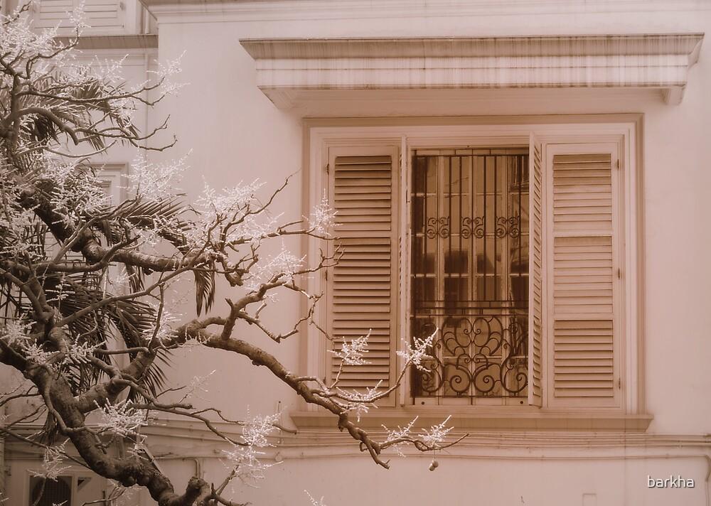 Window by barkha