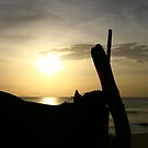 Sunset on the Beach by lemontree
