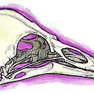 Starling Skull by topquark