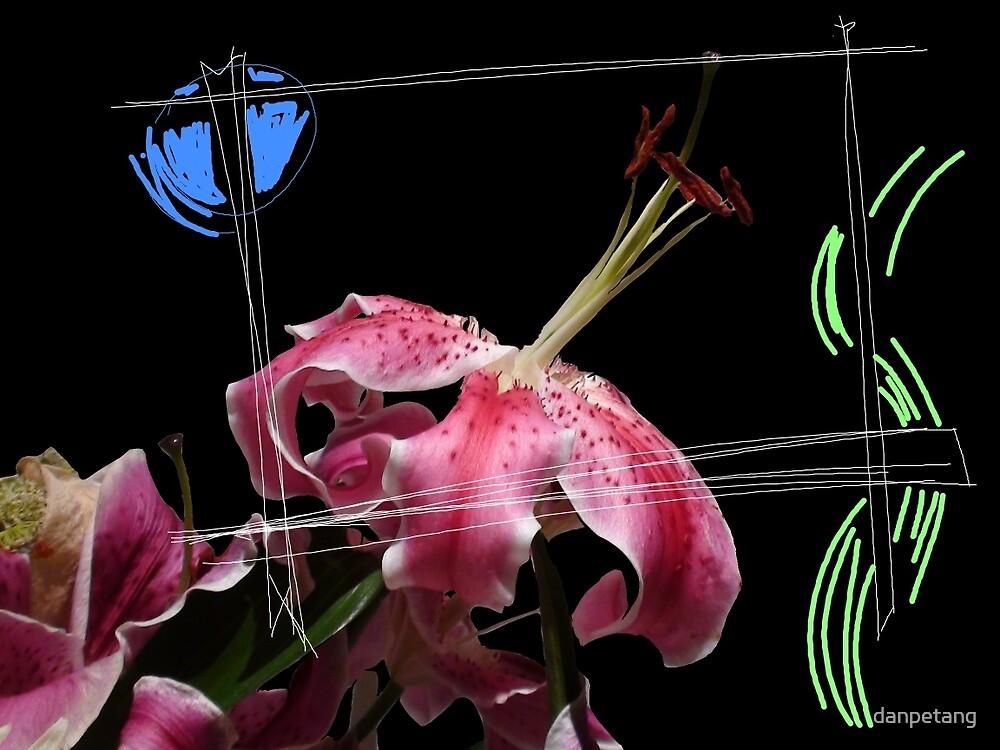 Flower by moonlight by danpetang