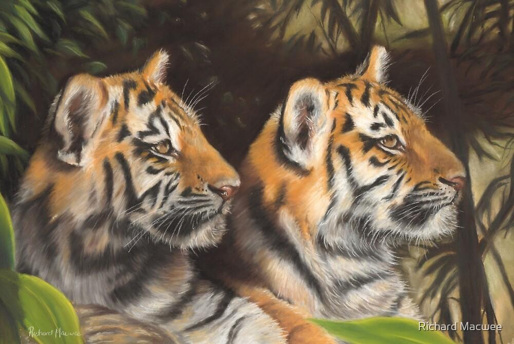 Tiger Cubs by Richard Macwee