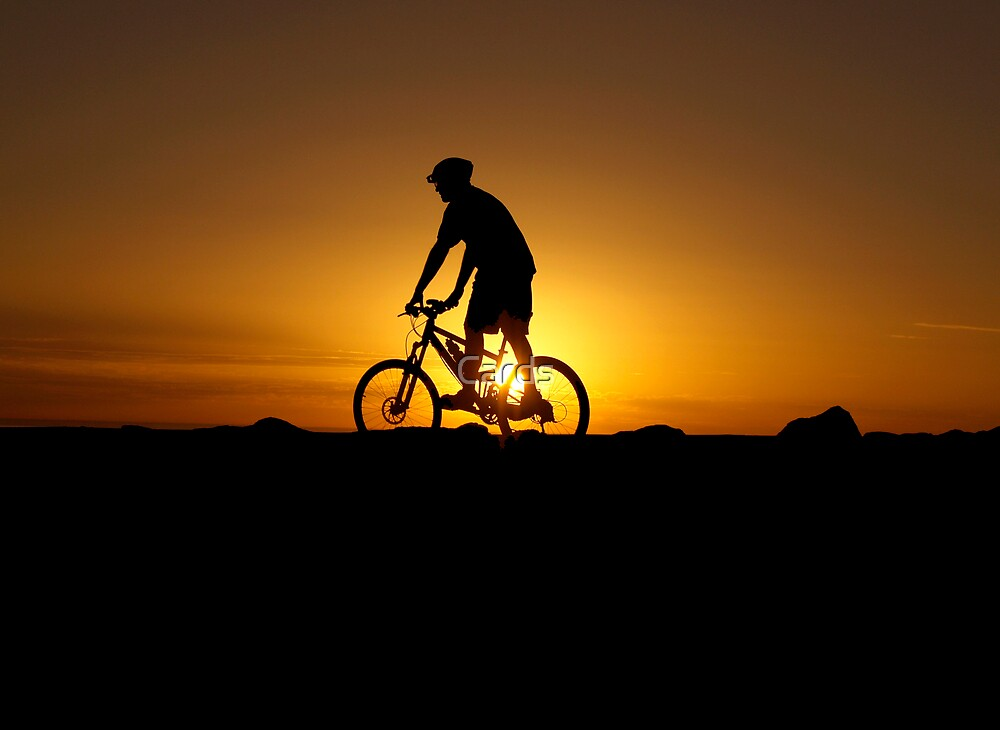 Silhouette Cyclist by Cards
