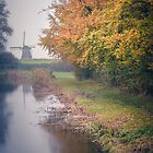 Colors in the mist (Bleiswijk) by photogenicgreen