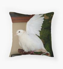 Hands Up... Spray The Armpit too!! - White Ringneck Dove - NZ Throw Pillow