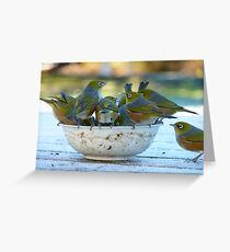 Make Room, My Feet Are Freezing Down Here!! - Silver-Eyes - NZ Greeting Card