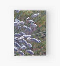 Salix Cinerea Hardcover Journal