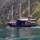 Getting Cruisy on Milford Sound, New Zealand by Elaine Teague