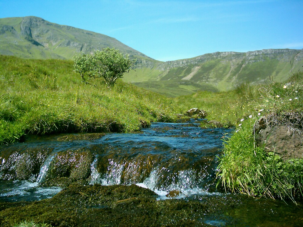isle of skye stream by peter  kidd