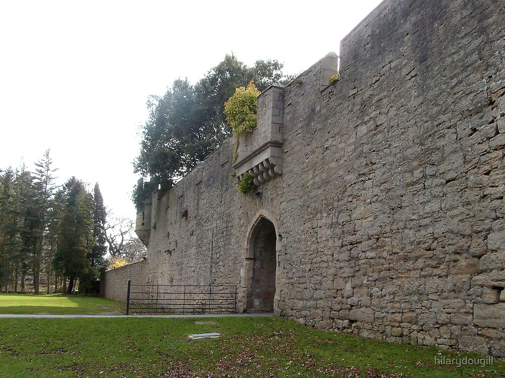 Outer wall of the Castle by hilarydougill