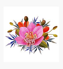 Beautiful Lily Flower Photographic Print