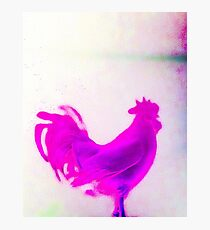 Abstract cockerel in pink, spray paint effect  Photographic Print