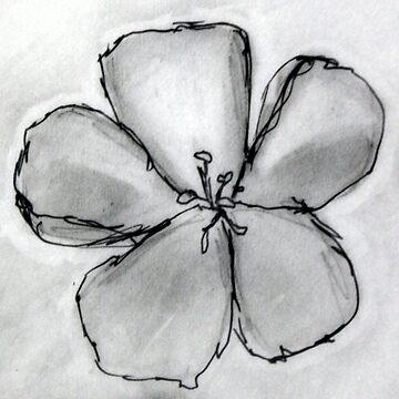 Artisan Flower Sketch Print 2 by rebeccagalardo