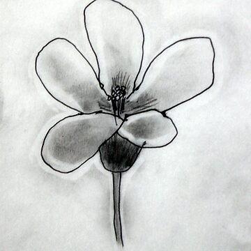 Artisan Flower Sketch Print 3 by rebeccagalardo