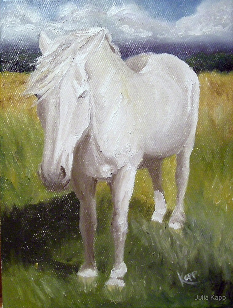 Old White Mare by Julia Kapp