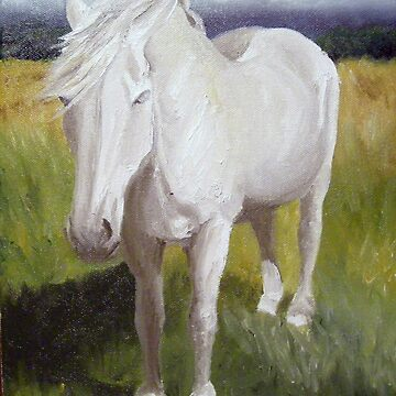 Old White Mare by juliakapp