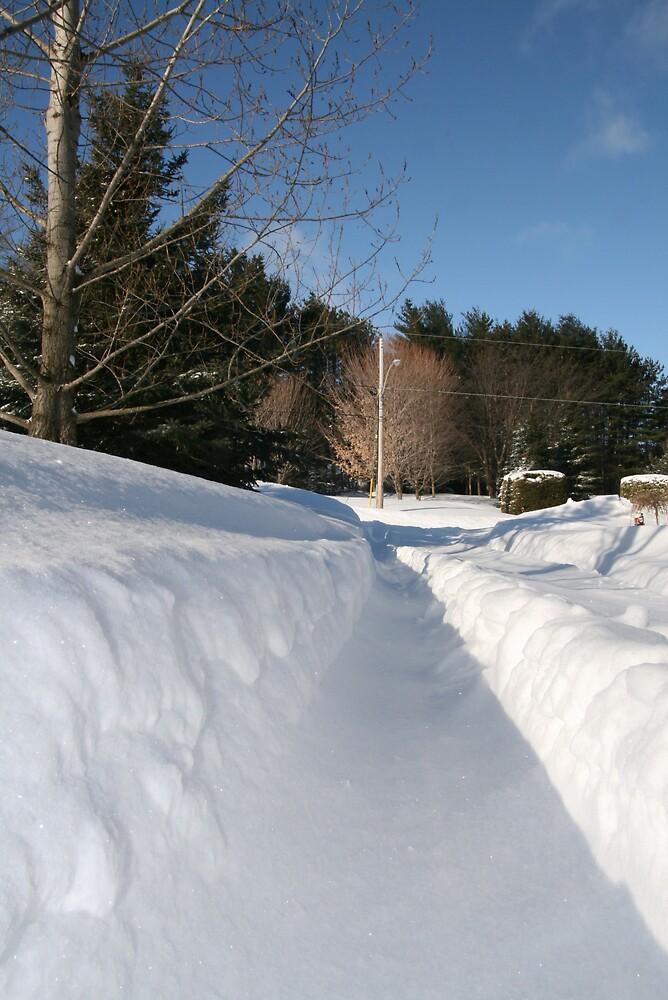 snow on driveway by eddyf246