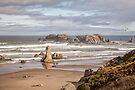 Sea Stacks by PhotosByHealy