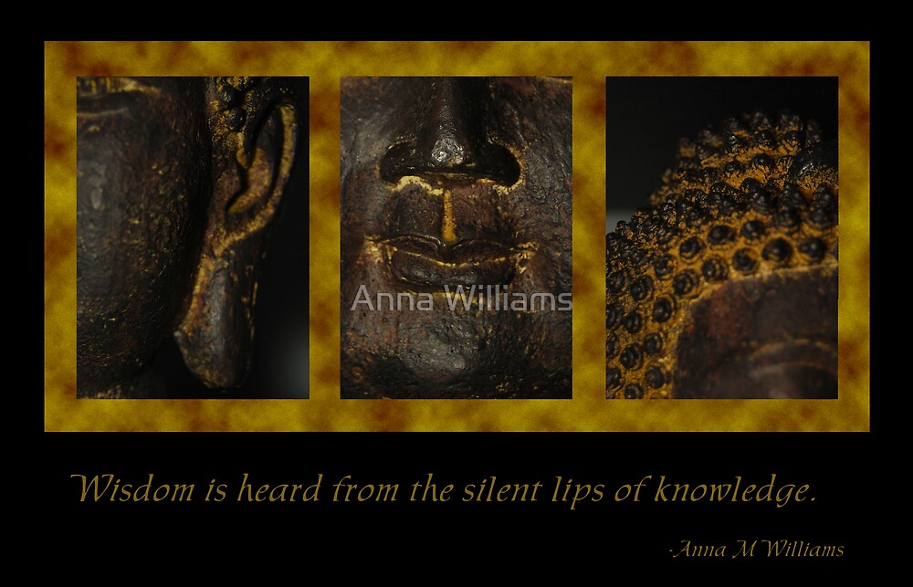 Silent wisdom by Anna Williams