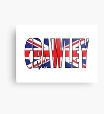Crawley Metal Print