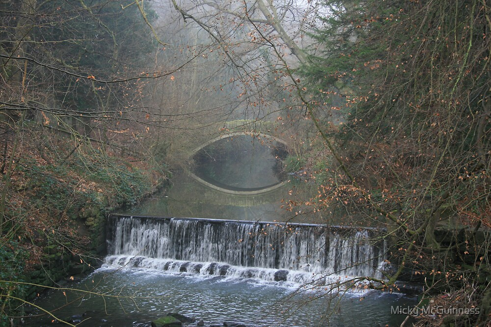 Jesmond Dene Eye Bridge (mist) by Micky McGuinness