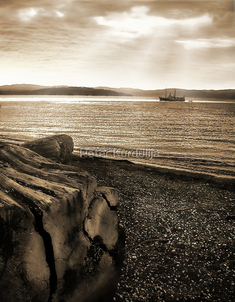Drift Wood, Shelly Beach And a Boat Under The Sun by Peter Kurdulija