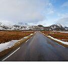 Beautiful Norway by Dominika Aniola