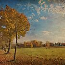 Autumn in Bavaria, last warm days and fallen leaves by gameover