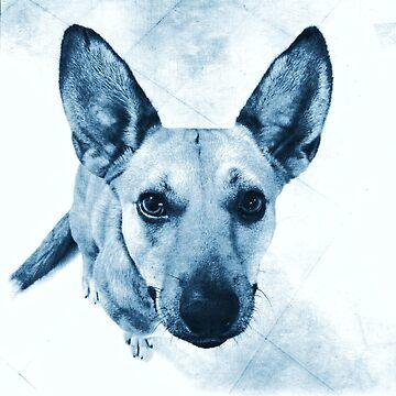 Carolina Blue Pup by OneDayArt