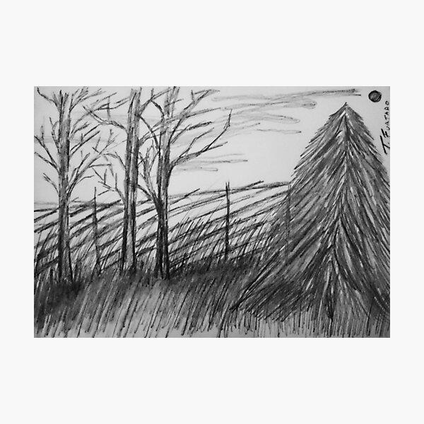 Black and white landscape Photographic Print
