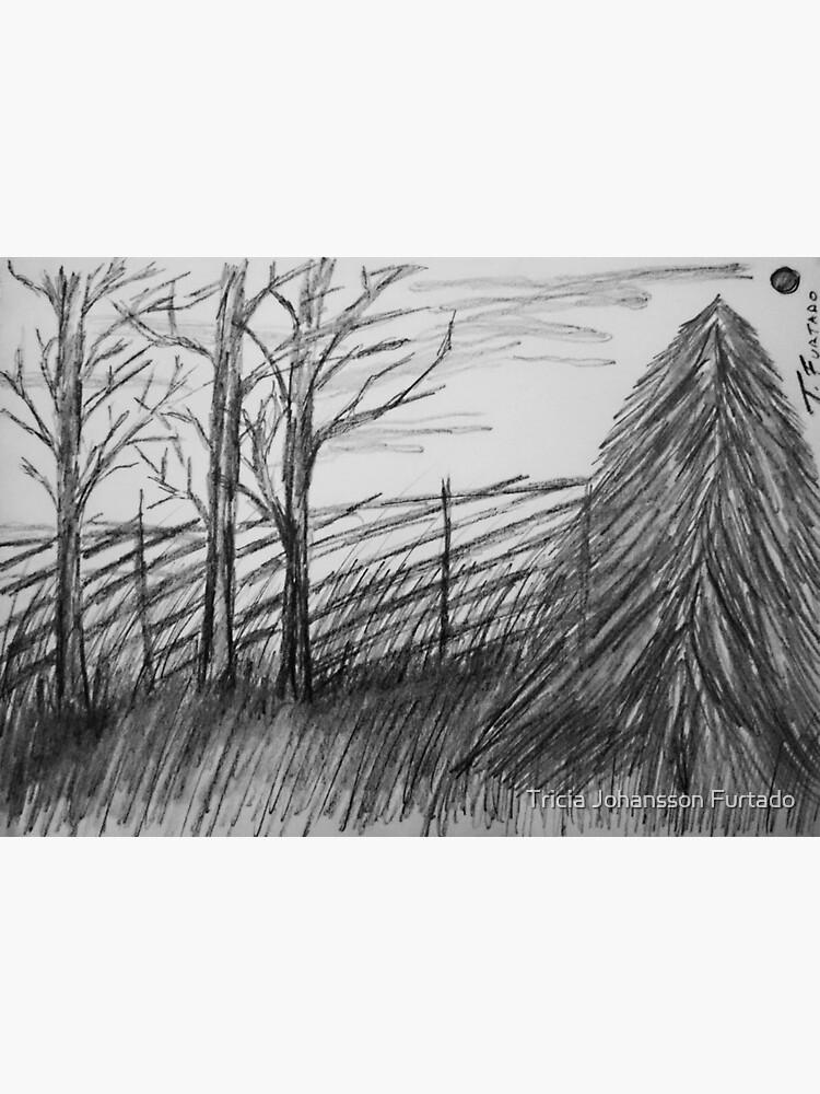 Black and white landscape by triciafurtado