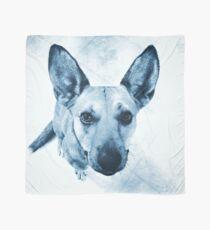 Carolina Blue Pup Scarf