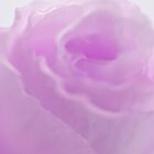 Pink Lisianthus Macro  by Sandra Foster