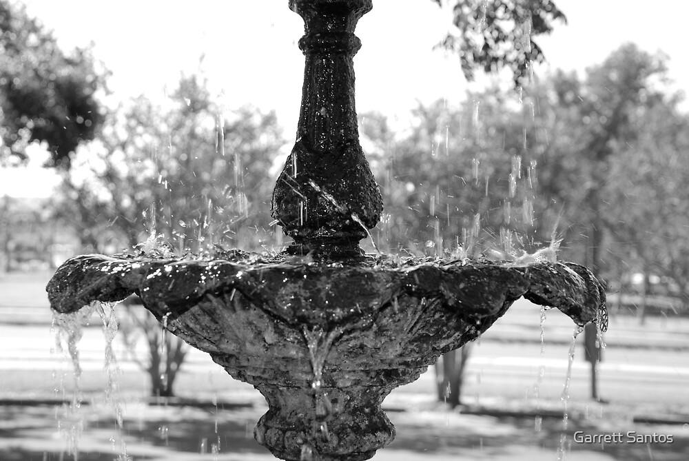 Frozen Fountain by Garrett Santos