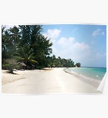 White sand beach and palm trees with blue colored ocean. Poster